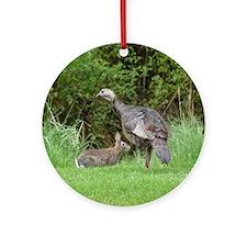 Turkey and Rabbit Round Ornament
