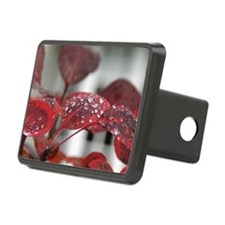 Dew on red leaves, Hitch Cover