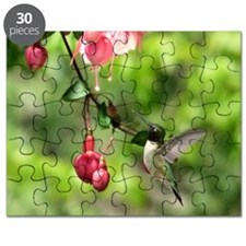 Hummingbird Black-chinned Puzzle