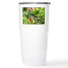 Hummingbird Black-chinned Travel Mug