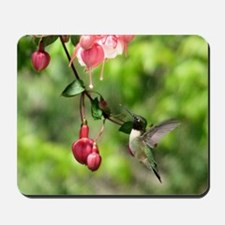 Hummingbird Black-chinned Mousepad