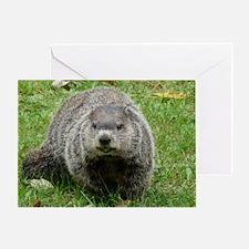 Groundhog eating Greeting Card
