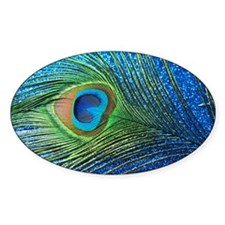 Glittery Blue Peacock Feather still Decal