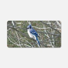 Bluejay Aluminum License Plate