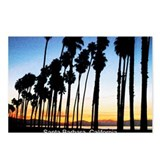 Santa barbara Postcards