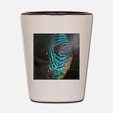Fish face Shot Glass