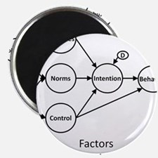 Factors Influencing Me? Magnet
