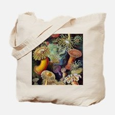 Ernst Haeckel Sea Anemones Tote Bag