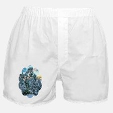 mesquite tree snow Boxer Shorts