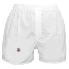 rainbow sun Boxer Shorts
