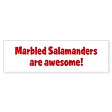 Marbled Salamanders are aweso Bumper Bumper Sticker