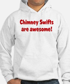 Chimney Swifts are awesome Hoodie