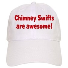 Chimney Swifts are awesome Baseball Cap