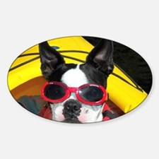 Red Goggled Boston Terrier Decal