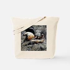 Tote7x7_Sealion_2 Tote Bag