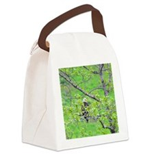 Tote7x7_Eagle_7 Canvas Lunch Bag