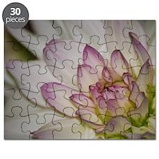 Blushing Pink Dahlia Puzzle