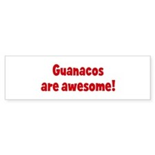 Guanacos are awesome Bumper Bumper Sticker