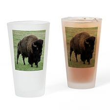 Tote10x10_Buffalo_1 Drinking Glass