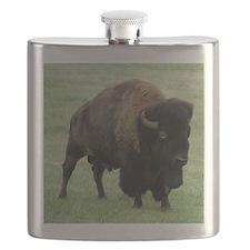 Tote10x10_Buffalo_1 Flask