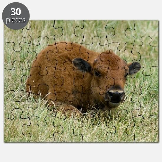 Tote10x10_Buffalo_2 Puzzle