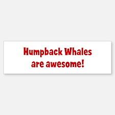 Humpback Whales are awesome Bumper Bumper Bumper Sticker