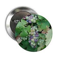 """Tote10x10_Grapes_1 2.25"""" Button"""