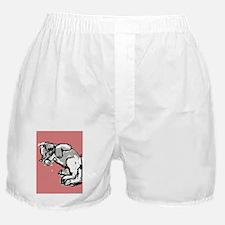 Soft Kitty Boxer Shorts