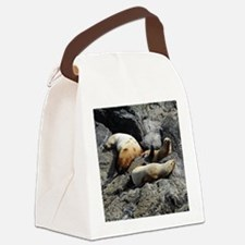 Tote10x10_Sealion_2 Canvas Lunch Bag
