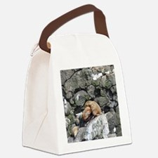 Tote10x10_Sealion_1 Canvas Lunch Bag