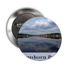 "Ramshorn Pond 2.25"" Button"