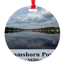 Ramshorn Pond Ornament
