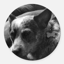 Heeler in Black and White Round Car Magnet