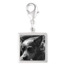 Heeler in Black and White Silver Square Charm