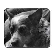Heeler in Black and White Mousepad