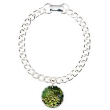 Koi Pond and Water Lilie Bracelet