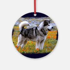 Alaskan malamute in a field of flow Round Ornament