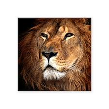 "Lion Square Sticker 3"" x 3"""