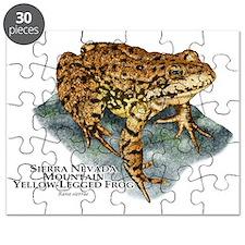Sierra Nevada Yellow-legged Frog Puzzle