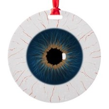 eye_texture_2_flattened-JPEG-BIG Ornament