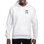 1000 digits of PI - Hooded Sweatshirt