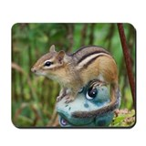 Chipmunks Mouse Pads
