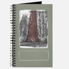 Sequoia Tree Journal