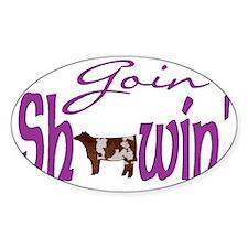 Shorthorn heifer Decal