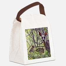 mule deer doe 2 Canvas Lunch Bag