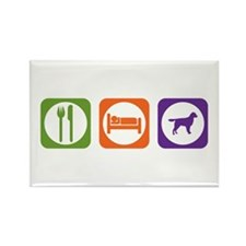 Eat Sleep Stabyhoun Rectangle Magnet