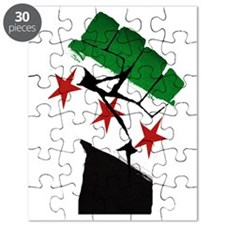 Syrian Strength Puzzle