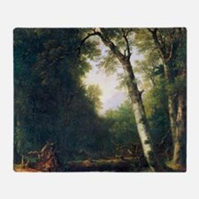 A creek in the woods by Asher Brown  Throw Blanket