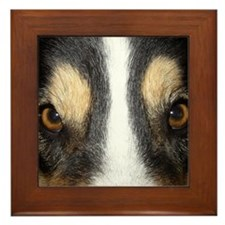 Cool Eyes Framed Tile