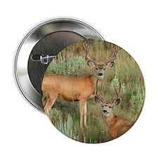 """Mule deer velvet 2.25"""" Button"""